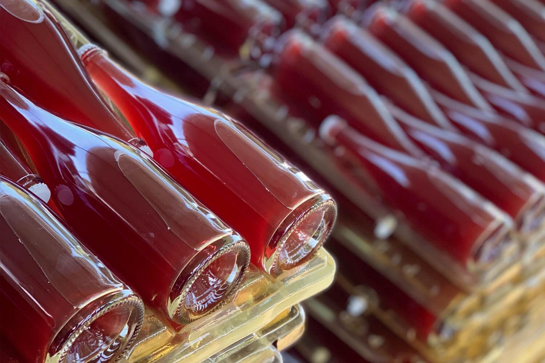 dotevini dote vini naturali syrah viognier rifermentato